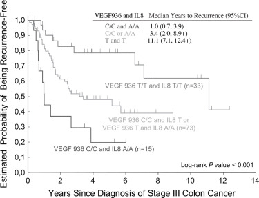 Polymorphisms In Vegf And Il 8 Predict Tumor Recurrence In Stage Iii Colon Cancer Sciencedirect