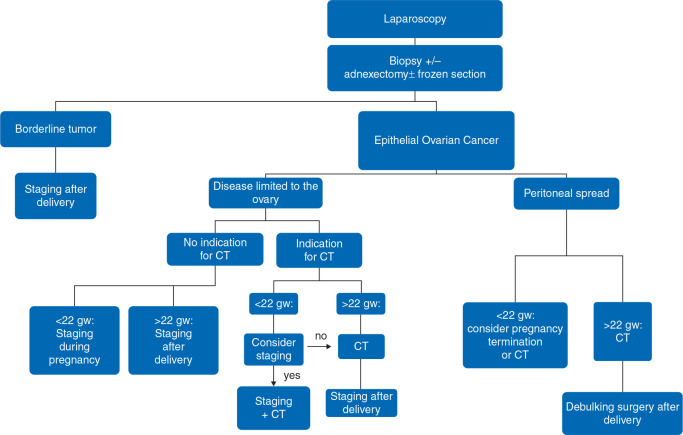 Gynecologic Cancers In Pregnancy Guidelines Based On A Third International Consensus Meeting Sciencedirect