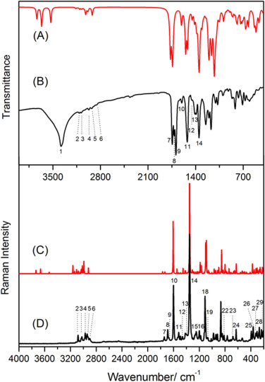 Vibrational spectroscopic and supramolecular studies applied