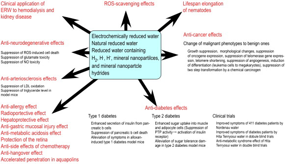 Advanced research on the health benefit of reduced water - ScienceDirect