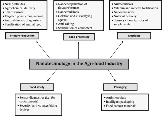Implications of nanotechnology for the agri-food industry