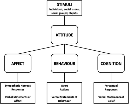 Cognitive Dissonance In Food And Nutrition A Conceptual Framework