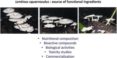 Bioprospecting of Lentinus squarrosulus Mont , an