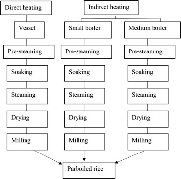 A Comprehensive Review Of Mathematical Modeling Of Paddy Parboiling And Drying Effects Of Modern Techniques On Process Kinetics And Rice Quality Sciencedirect