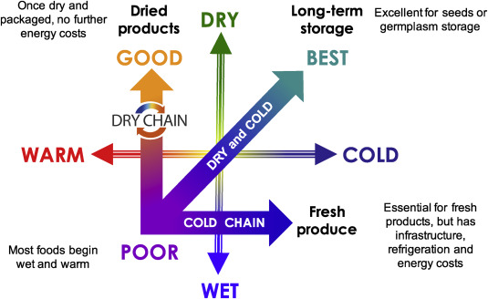 The dry chain: Reducing postharvest losses and improving