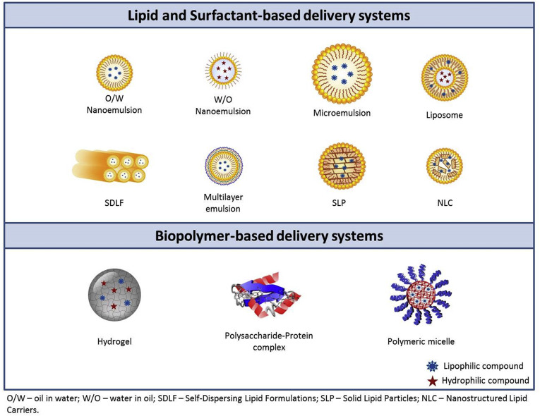 Advances in nutraceutical delivery systems: From formulation