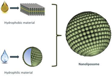 ساختار نانو لیپوزوم