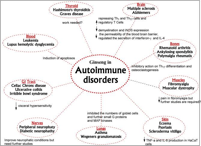 ciprofloxacina 500 reacciones adversas