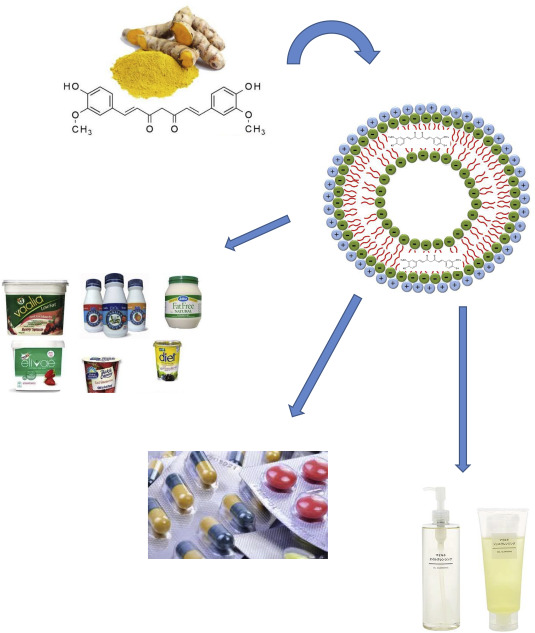 Application of curcumin-loaded nanocarriers for food, drug