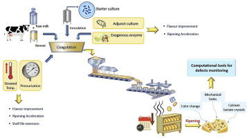 Cheese ripening: A review on modern technologies towards