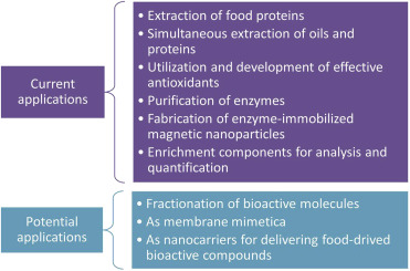Applications of reverse micelles technique in food science: A