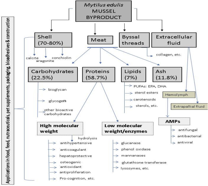 Bioprocessing of mussel by-products for value added