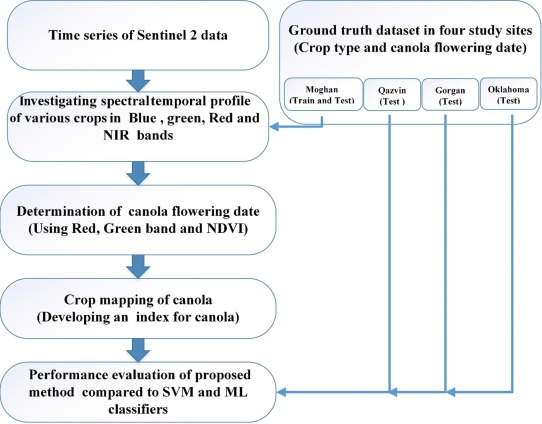 Automatic canola mapping using time series of sentinel 2 images
