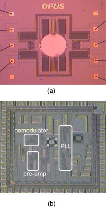 Mems Mirror Chip