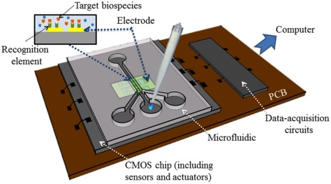 CMOS based capacitive sensors for life science applications