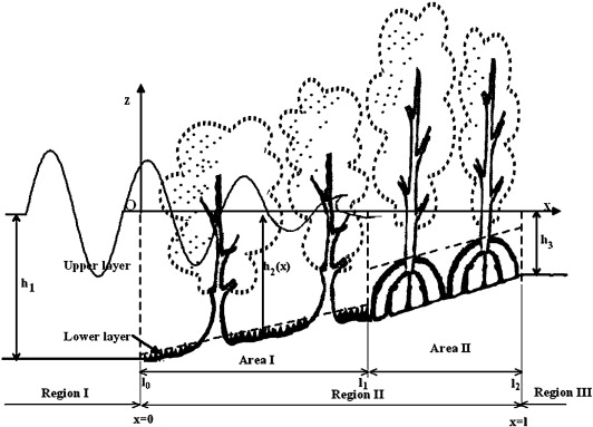 Energy Dissipation In Non Uniform Mangrove Forests Of Arbitrary