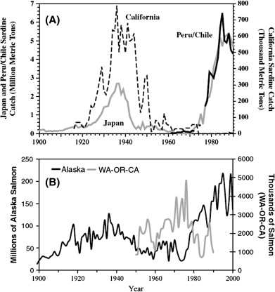 Comparisons Of Zooplankton Time Series Sciencedirect