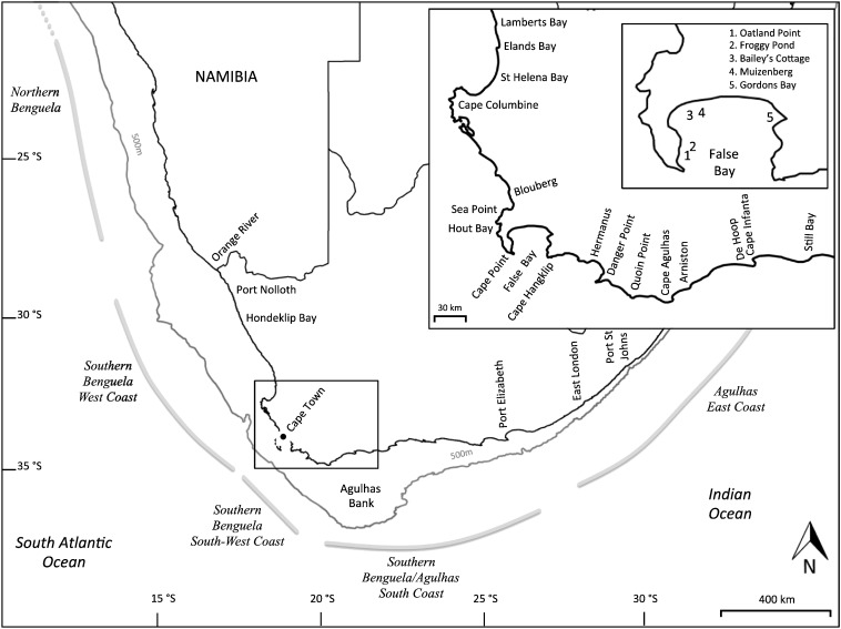 Ecosystem Change In The Southern Benguela And The Underlying