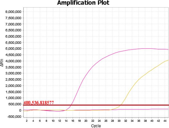 Fig 2 amplification plot covid-19