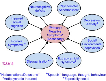 Negative symptoms of schizophrenia: Clinical characteristics