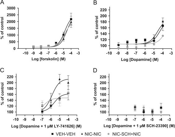 Garcinia cambogia diet results image 9