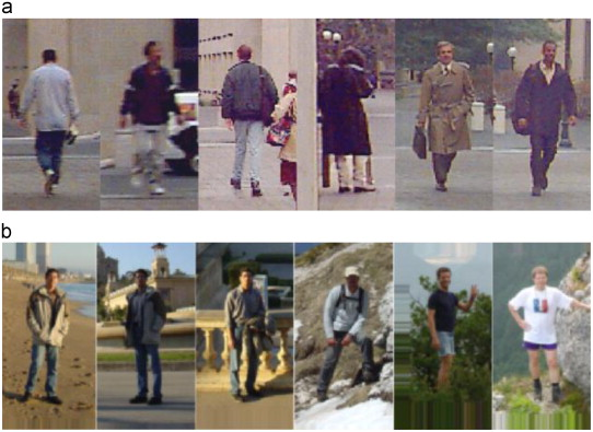 Pedestrian detection in unseen scenes by dynamically