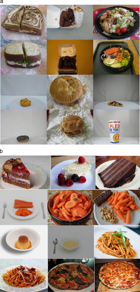 Food image classification using local appearance and global some samples of the pfi dataset 6 a and our dataset b forumfinder Images
