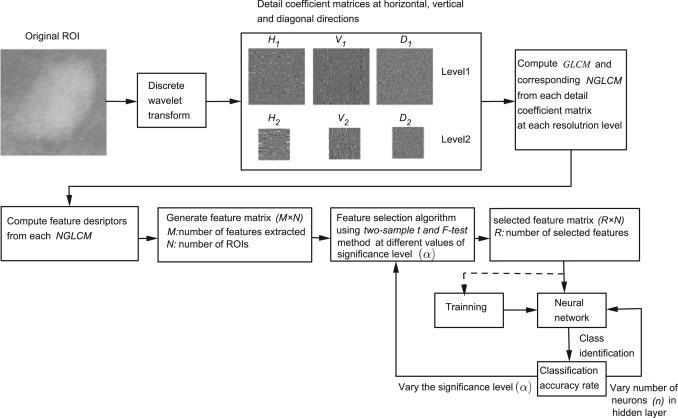 Mammogram classification using two dimensional discrete