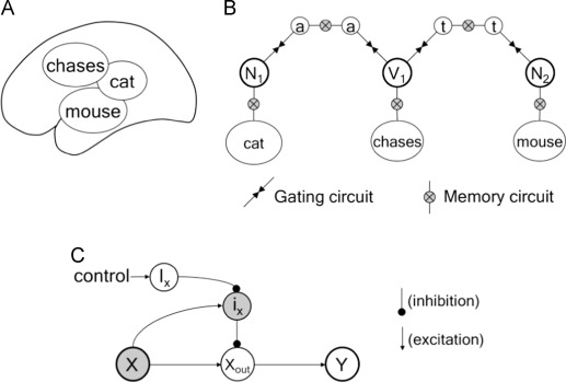 A Central Pattern Generator For Controlling Sequential Activation In