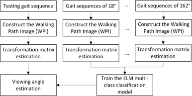 Gait recognition method for arbitrary straight walking paths
