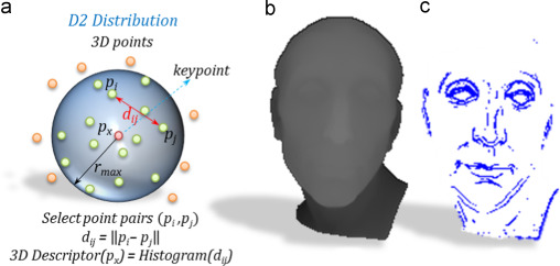 Comparison of 3D local and global descriptors for similarity