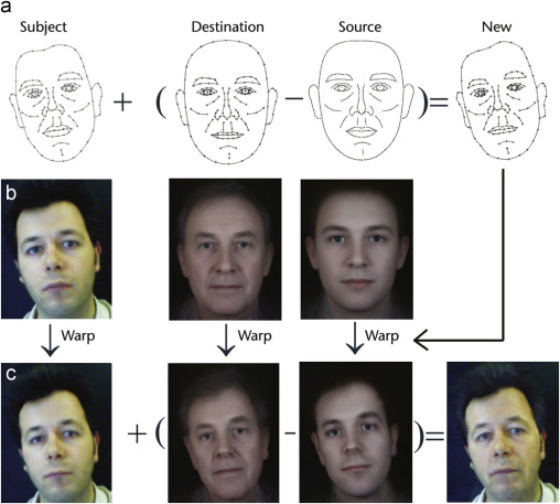 Age progression: Current technologies and applications