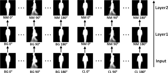Invariant feature extraction for gait recognition using only