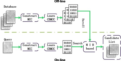 Fast exact fingerprint indexing based on Compact Binary Minutia