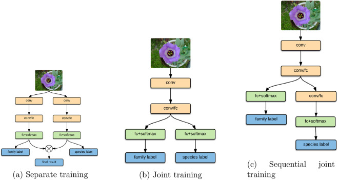 TA-CNN: Two-way attention models in deep convolutional