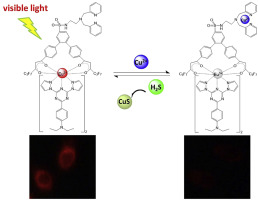 A visible-light-excited europium(III) complex-based