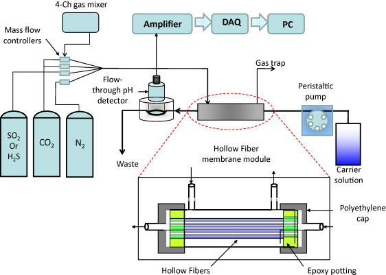 Gas analyzer for continuous monitoring of carbon dioxide in gas