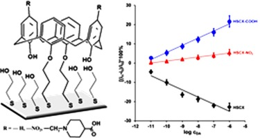 Calix[4]arene derivatives as dopamine hosts in electrochemical
