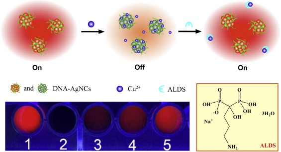 Copper(II)–mediated sliver nanoclusters as a fluorescent