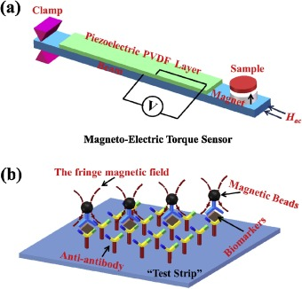A novel approach based on magneto-electric torque sensor for