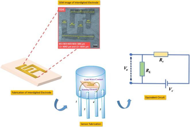 Growth of Eshelby twisted ZnO nanowires through nanoflakes ... on