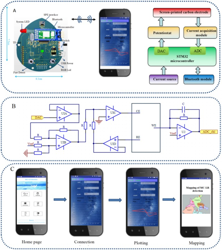 Point-of-need detection of microcystin-LR using a smartphone