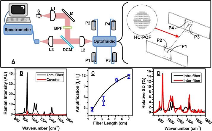 Optofluidic label-free SERS platform for rapid bacteria