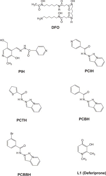 PCTH: a novel orally active chelator of the aroylhydrazone