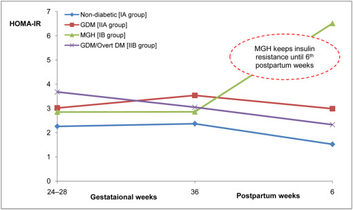 Altered maternal metabolism during mild gestational hyperglycemia as