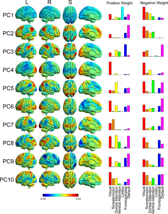 Functional Connectivity Of Emotional Well Being