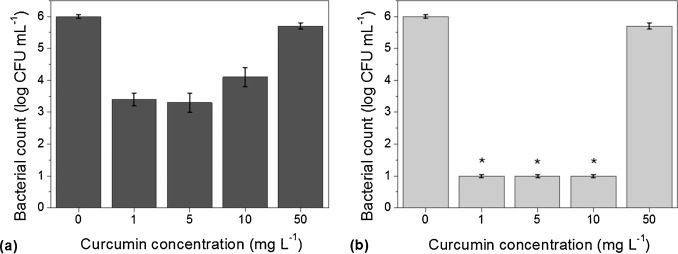 Antimicrobial activity of curcumin in combination with light against