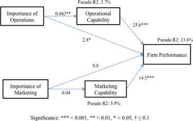 Impact of operational and marketing capabilities on firm
