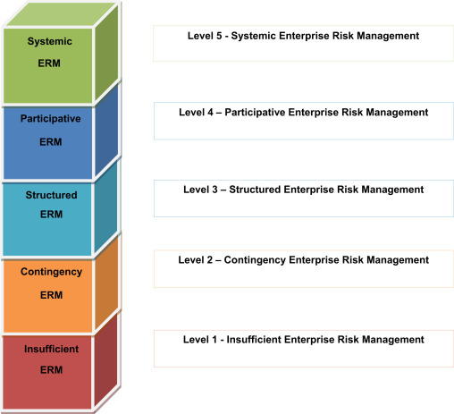 Rims Risk Maturity Model For Erm
