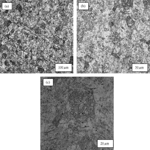 A study of the microstructure and hardness of two titanium